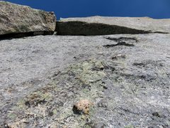 Rock Climbing Photo: The knobby face at the top of Pitch 8. Ascend the ...