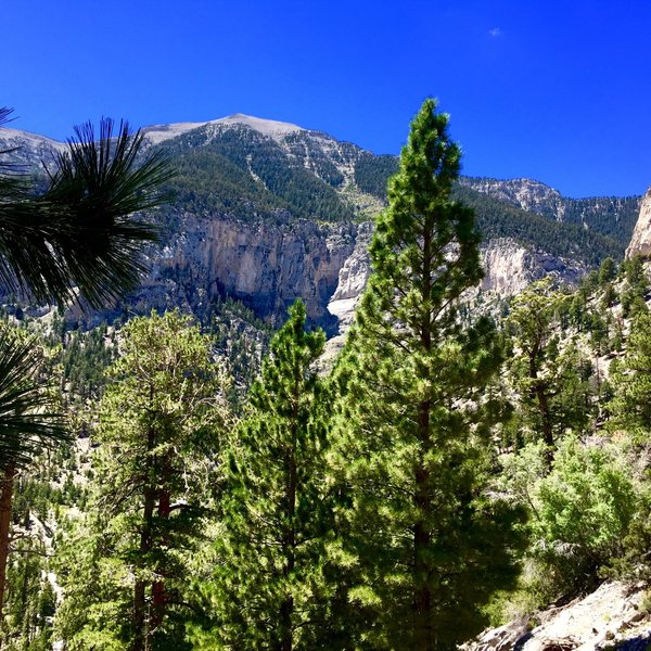 Mt Charleston Peak