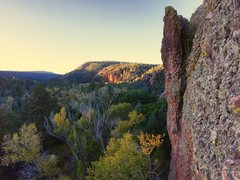 Rock Climbing Photo: El Rito, NM  fall