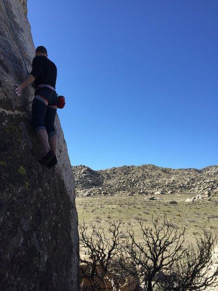 Rock Climbing Photo: culp