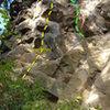 Upper left Jungle topo