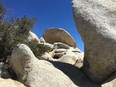 Rock Climbing Photo: X2 Boulder, as seen from The Fang.