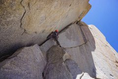 Rock Climbing Photo: an insanely hard handcrack in the corner, slot loo...