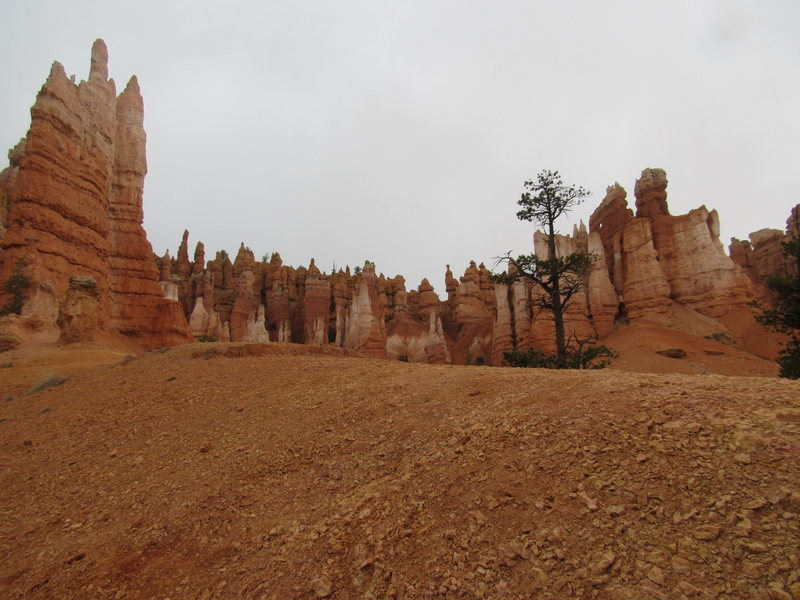 Rock Climbing Photo: Bryce Canyon