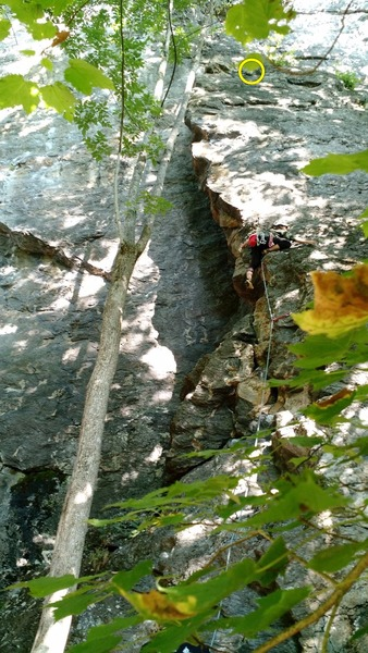 Rock Climbing Photo: Most of the route is visible, including hornet&#39...