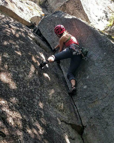 Fun climbing off the the ground.