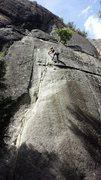 Church Bowl Tree // Yosemite Valley