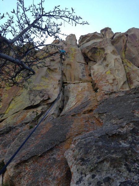 Rock Climbing Photo: Pulling through the steep jugs