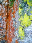Rock Climbing Photo: Day Glo!!!!!