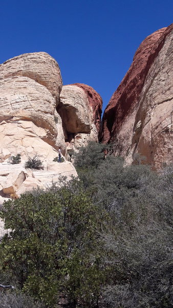Canyons at Red rock