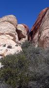 Rock Climbing Photo: Canyons at Red rock