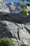 Rock Climbing Photo: Cleaning the Valley Giant #9 on rappel. Cam & phot...