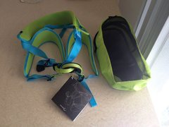 Harness and mesh bag it came in