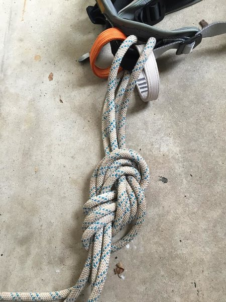 The knot<br>