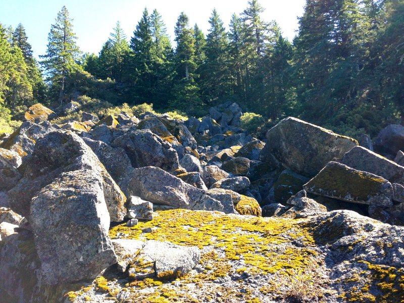 Rock Climbing Photo: sasquatch