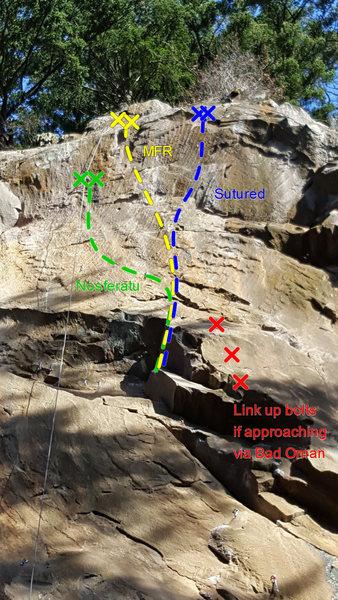 Upper Bat Wall Topo