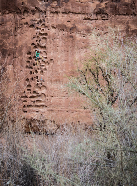 Who knew there was such a line in Moab!