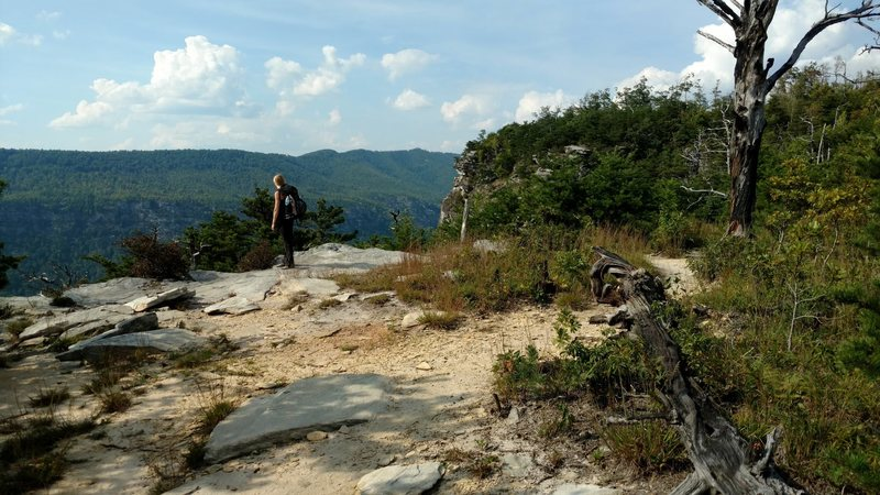 Rock Climbing Photo: This is the point on the trail, about 500 feet bef...