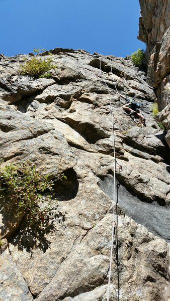Rock Climbing Photo: Garrett Gillest, age 10, on Honey Pot.