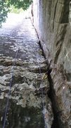 Rock Climbing Photo: Poison Ivy