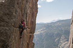 Rock Climbing Photo: Eddie bearing down.