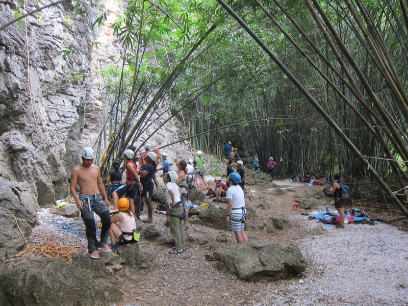 Rock Climbing Photo: The hordes