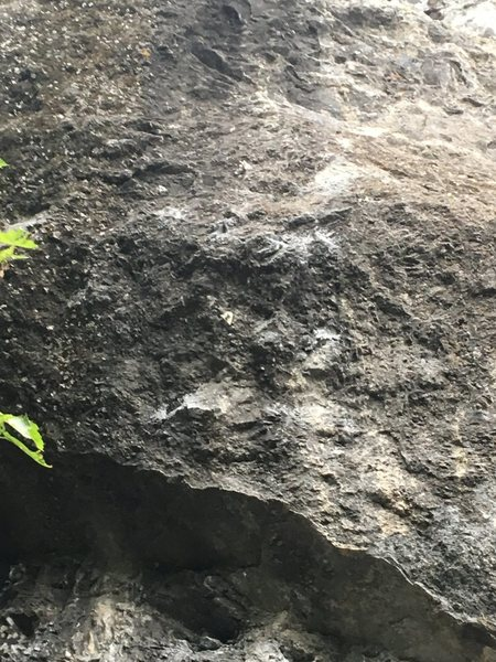 Rock Climbing Photo: Closeup of the business