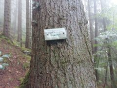 Rock Climbing Photo: More signs. The trail isn't always obvious at ...