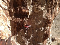 Rock Climbing Photo: Mary Morgan on-sighting