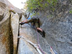 Rock Climbing Photo: Pitch 6-8. Ryan starting up our second pitch up th...
