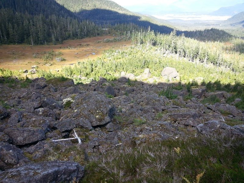 Rock Climbing Photo: Fish Creek Knob boulder field from above.