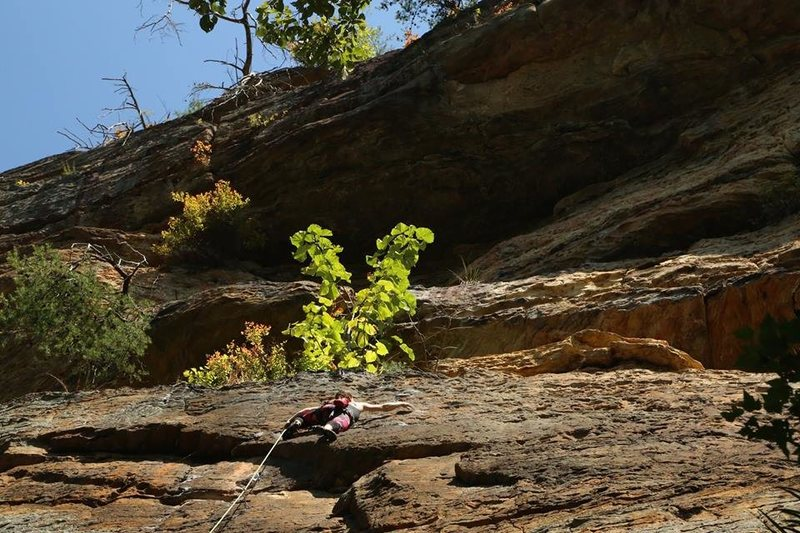 Sport climbing for the labor day week-end.<br> Red River Gorge - Kentucky.