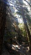 Rock Climbing Photo: Cool and shady