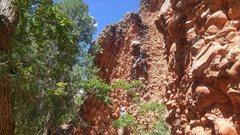 Rock Climbing Photo: Rory on ZGP. September 2016