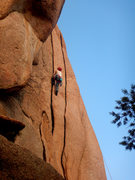 Rock Climbing Photo: Super splitter.