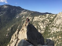 Rock Climbing Photo: Jake Bingham on the summit of the FA of Meddle!