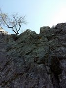 Rock Climbing Photo: Mittle area with many moderate climbs, a favorite ...