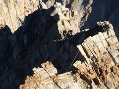 Rock Climbing Photo: Dalton on the ridge