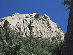 Rock Climbing Photo: The promising looking cracks at the base of Lost P...