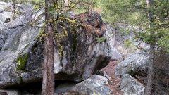 Baboon Boulder