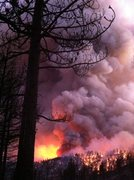 Trapped by fire. Hopefully it's once in a lifetime experience. Turned out safe, smokey, & with new friends.