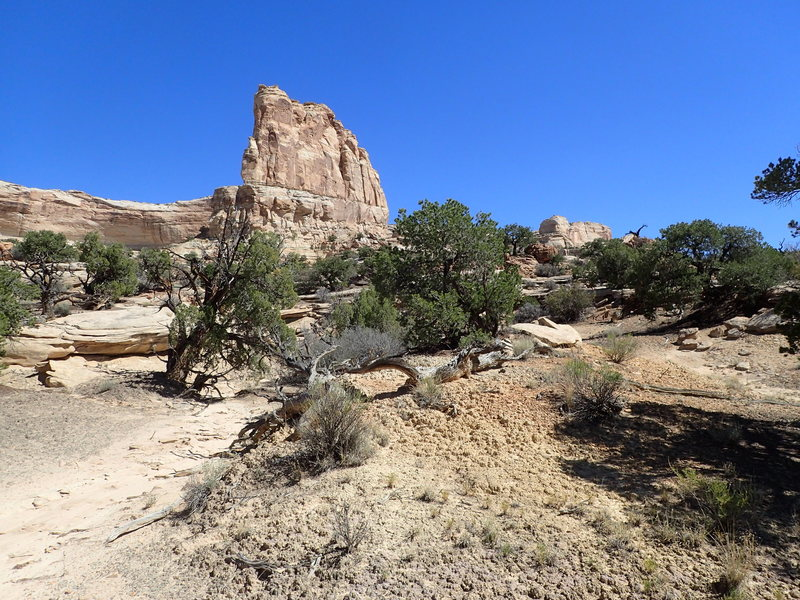 Rock Climbing Photo: Mirage Tower south face.  The route is on the othe...