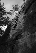 Rock Climbing Photo: Dmitriy leading Big Deal without C3's or offse...