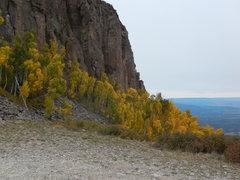 Rock Climbing Photo: 9/20/16 still good in the LJ