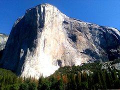 Rock Climbing Photo: El Capitan