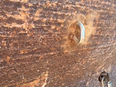 Rock Climbing Photo: Closeup of new bolt at top anchor.