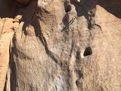 Rock Climbing Photo: New 2nd bolt on 3rd pitch with old holes patched.