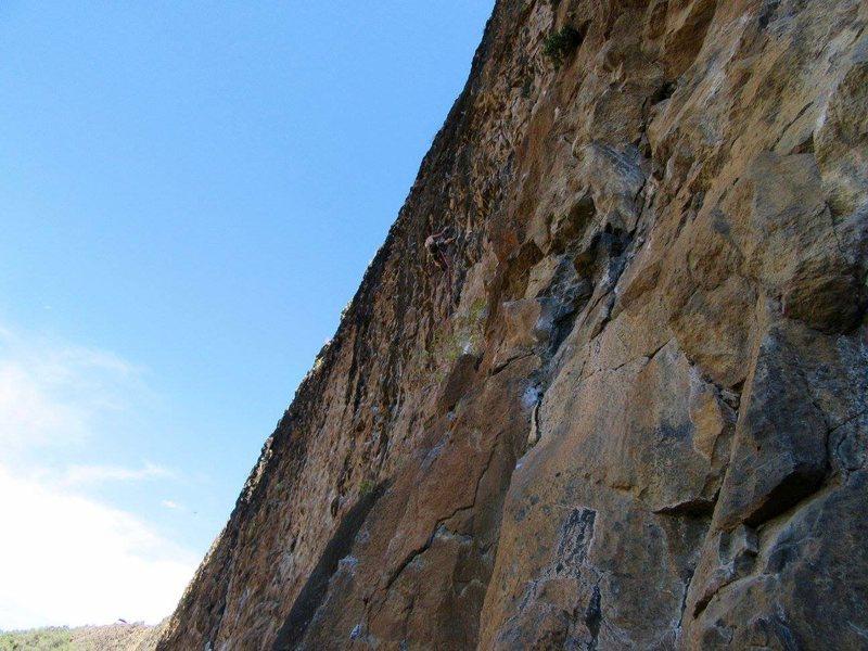 Subdivision @ gold wall
