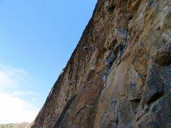 Rock Climbing Photo: Subdivision @ gold wall