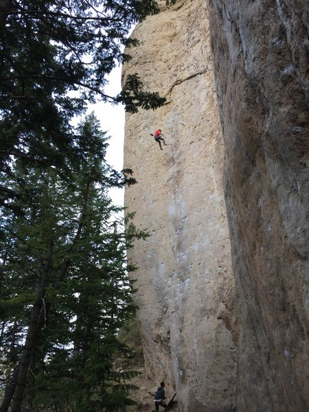Dylan taking a victory whip on Great White Behemoth 5.12b in Ten Sleep Canyon